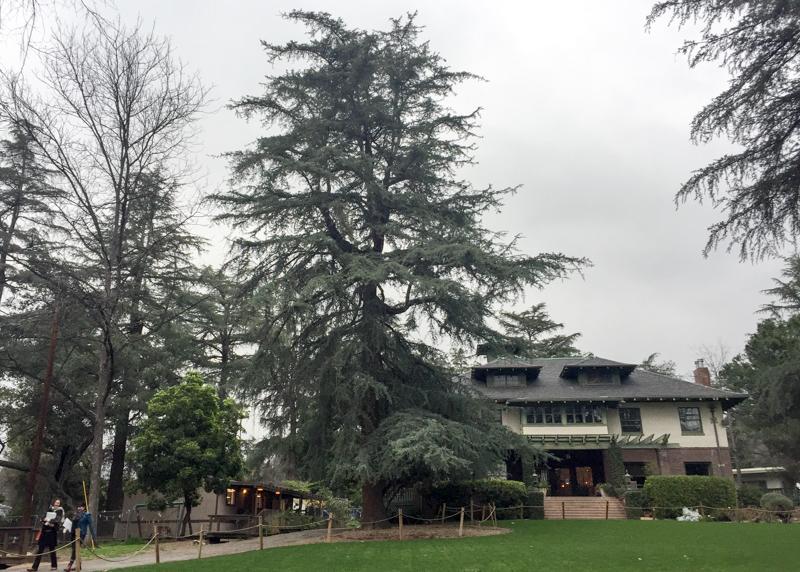 Pasadena Waldorf School in Altadena, CA, host to the 2nd Conference of the Waldorf Spanish Teachers Association (WSTA)